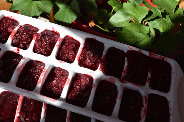 Raspberries_001
