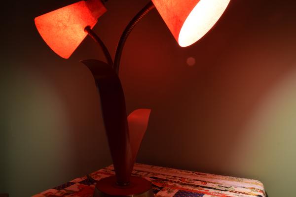 dsc_0498-lamp