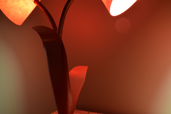 dsc_0499-lamp