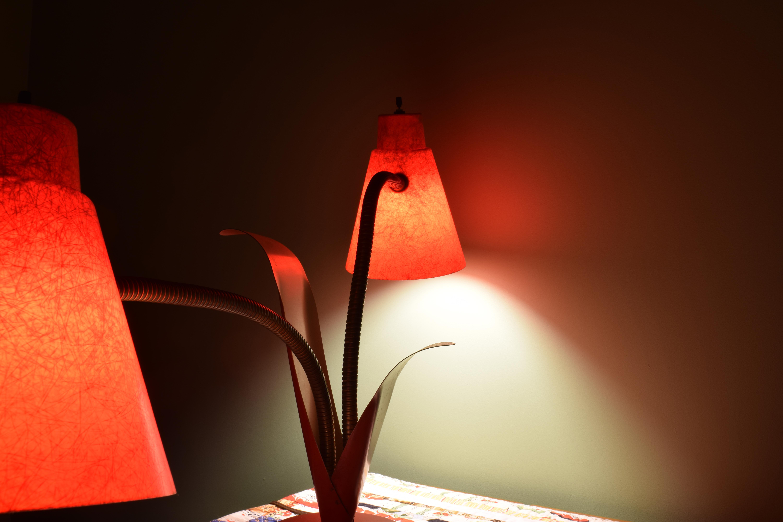 dsc_0531-lamp