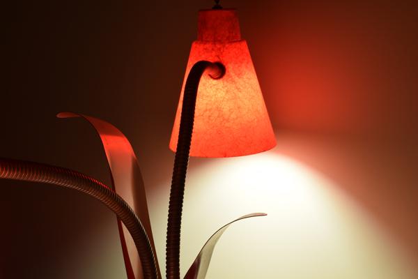 dsc_0532-lamp