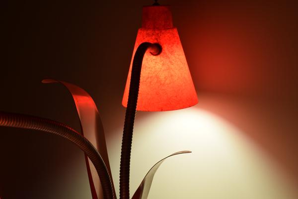dsc_0533-lamp