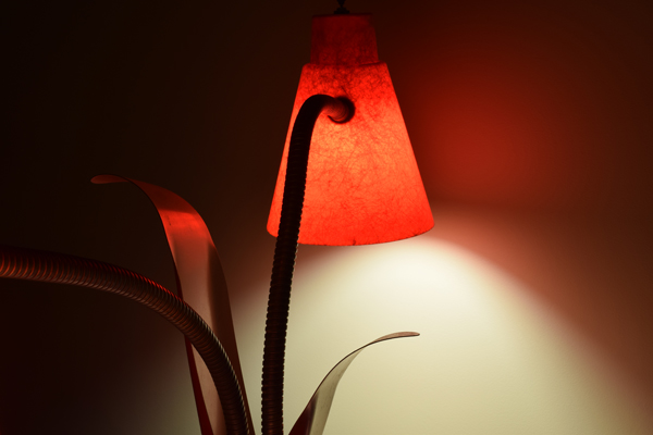 dsc_0534-lamp