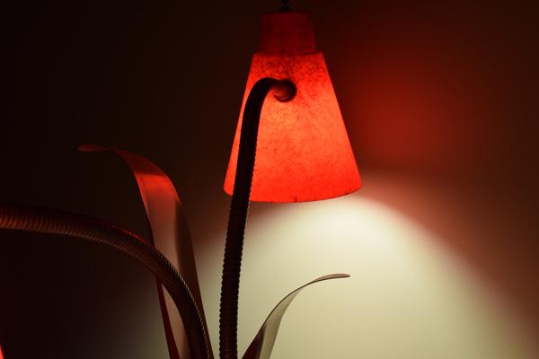 dsc_0535-lamp