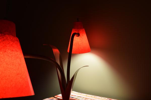dsc_0538-lamp