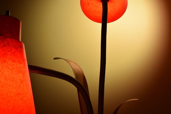 dsc_0545-lamp