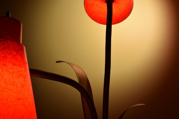 dsc_0546-lamp