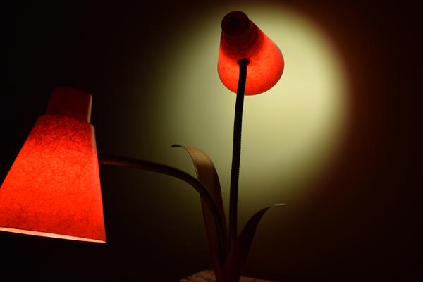 dsc_0549-lamp