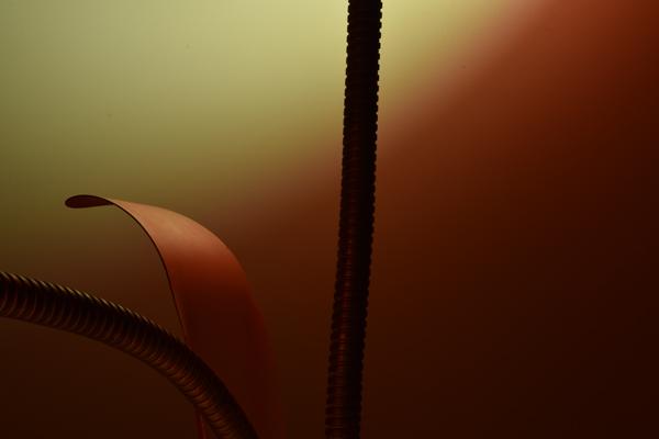 dsc_0556-lamp