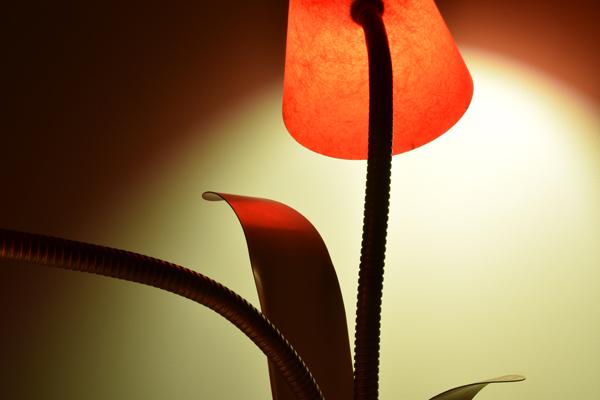 dsc_0559-lamp