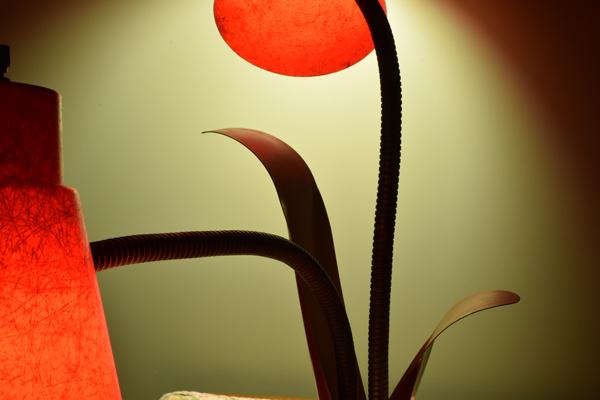 dsc_0570-lamp